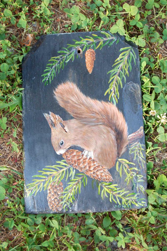 ecureuil equilibriste